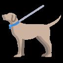Walk in the Park Dog Walk Logo